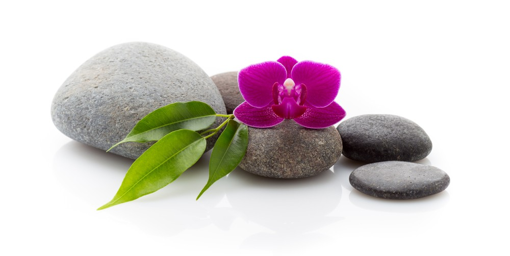 flower and zen stones